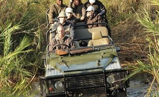 Off-Road Game Viewing