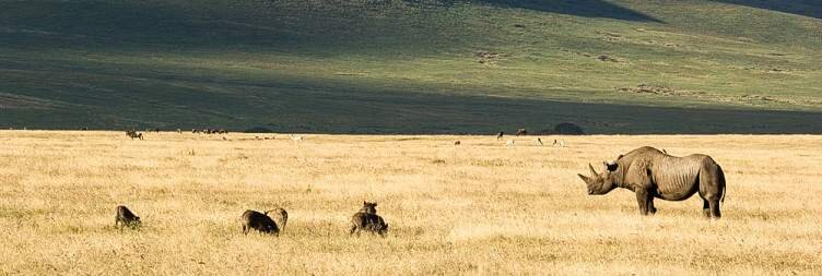 Stay Perched on The Rim of Ngorongoro Crater